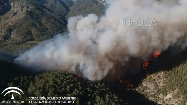 El Gobierno destinará 250.000 euros a paliar los daños causados por el incendio de la Sierra de Segura
