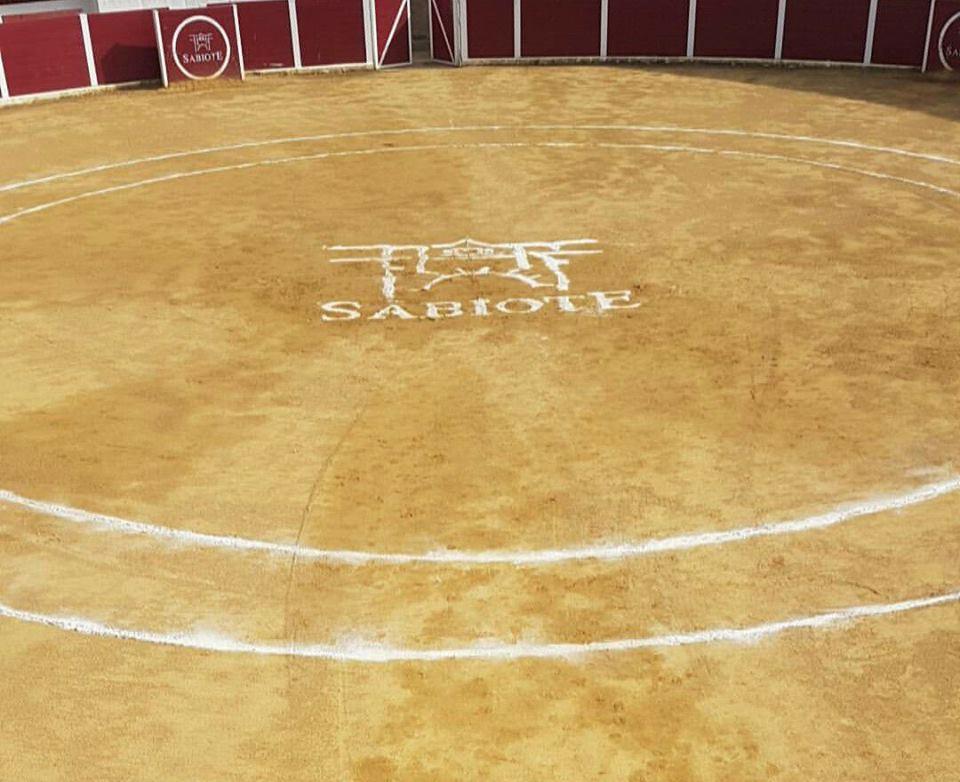 Sabiote tendrá una Feria y Fiestas de 'San Ginés' 2021 con eventos culturales y aforos limitados