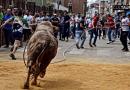 Un total de 95 reses recorren desde este martes las calles de Beas de Segura en los 'toros ensogaos'