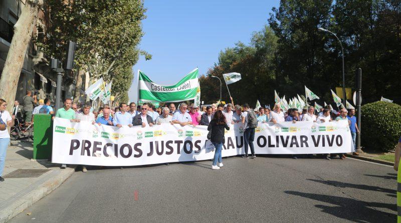 Miles de andaluces lideran la gran manifestación en Madrid en defensa del olivar tradicional