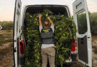La Guardia Civil interviene 200 kilos de marihuana en Villacarrillo