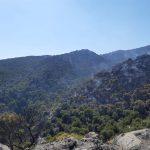 Hasta 14 bomberos continúan las labores para extinguir el incendio forestal de Quesada