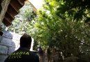 La Guardia Civil investiga a un vecino de  Santiago de la Espada por un delito contra la salud publica