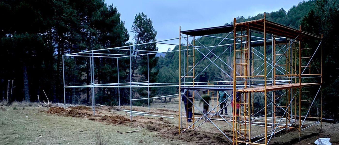 Andalucía avanza en la recuperación del milano real con el inicio de un programa de sueltas en Jaén